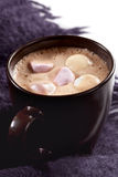 Hot Chocolate with Marshmallows Stock Photos