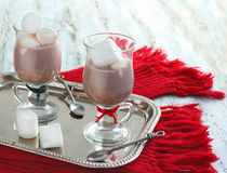 Hot chocolate with marshmallows. Hot chocolate in a glass cup with marshmallows Royalty Free Stock Photos