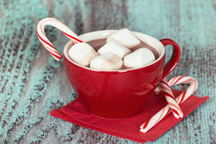 Hot Chocolate with marshmallows Royalty Free Stock Photo