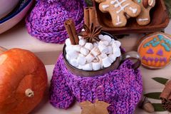 Hot chocolate with marshmallows, cinnamon and anise in a mug wrapped into knitted scarf. Halloween gingerbread cookies and pumpkins are around stock photography