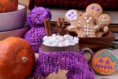 Hot chocolate with marshmallows, cinnamon and anise in a mug wrapped into knitted scarf. Halloween gingerbread cookies and pumpkins are around stock photo