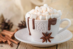 Hot chocolate with marshmallows and cinnamon in a white Cup Stock Images