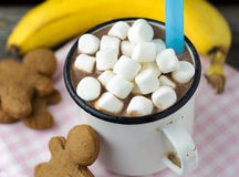 Hot chocolate with marshmallows and cookies Stock Image