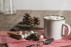 Hot chocolate. With marshmallows on a rustic table stock image