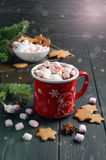 Hot chocolate with marshmallows and spices on dark wooden background. Stock Photos