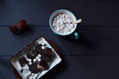 Hot chocolate with marshmallows and sweets Stock Images