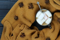 Hot chocolate with marshmallows. And warm scarf Royalty Free Stock Image