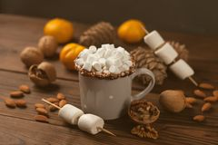 Hot chocolate with marsmallow candies, winter new year still life, toned photo. Hot chocolate with marsmallow candies, winter new year still life, toned photo stock photos