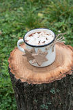 Hot Chocolate with Meringues and Cinnamon Cookies on a Log. Mug of Hot Chocolate with Meringues and Cinnamon Cookies on a Log Stock Photos