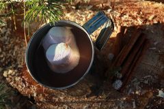 Hot Chocolate Milk with marshmallows. In forest Royalty Free Stock Photos