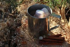 Hot Chocolate Milk with marshmallows. In forest Stock Image