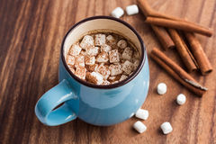 Hot chocolate with mini marshmallow and cinnamon Royalty Free Stock Photography