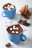 Hot chocolate with mini marshmallows Stock Photography