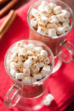 Hot chocolate with mini marshmallows cinnamon winter drink Royalty Free Stock Images