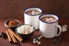 Hot chocolate with mini marshmallows cinnamon winter drink Royalty Free Stock Photo