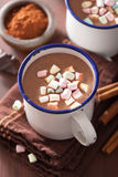 Hot chocolate with mini marshmallows cinnamon winter drink Royalty Free Stock Photography