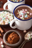 Hot chocolate with mini marshmallows cinnamon winter drink Royalty Free Stock Photo
