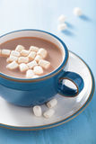 Hot chocolate with mini marshmallows Royalty Free Stock Photography