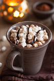 Hot chocolate with mini marshmallows warming drink royalty free stock photo