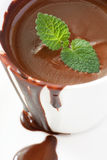 Hot chocolate with mint Stock Photography