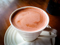 Hot Chocolate in a mug Royalty Free Stock Photography