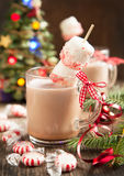 Hot chocolate with peppermint candies coated marshmallows Royalty Free Stock Photos