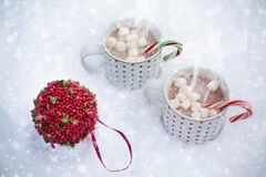 Hot Chocolate, Snow, Scarf Royalty Free Stock Photography