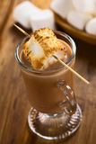 Hot Chocolate with Toasted Marshmallow Royalty Free Stock Image