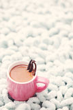 Hot chocolate with vanilla Royalty Free Stock Image