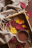 Hot chocolate warming drink wool throw cozy autumn leaves.  stock image