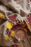 Hot chocolate warming drink wool throw cozy autumn leaves.  royalty free stock photography