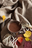 Hot chocolate warming drink wool throw cozy autumn leaves.  stock photo