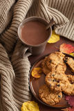 Hot chocolate warming drink wool throw cozy autumn leaves Stock Photo