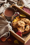 Hot chocolate warming drink wool throw cozy autumn leaves Stock Photos