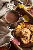 Hot chocolate warming drink wool throw cozy autumn leaves cookie. S stock images