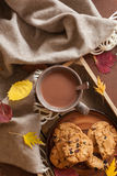 Hot chocolate warming drink wool throw cozy autumn leaves cookie stock photography
