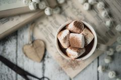 Free Hot Chocolate With Marshmallows Royalty Free Stock Photos - 103801448