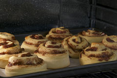 Hot Cinnamon rolls baking in a convection oven, almost done tops Royalty Free Stock Photo