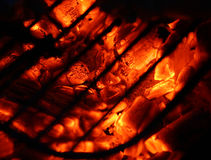 Hot coal Stock Images