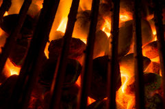 Hot coals. Burning on the grill royalty free stock photos