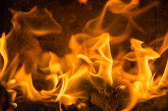 Hot coals. In the fire Stock Photos