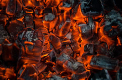Hot coals. In the fire Stock Image