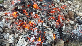 Hot coals in the fire Stock Photos