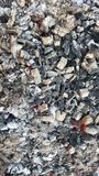 Hot coals in the fire Royalty Free Stock Images