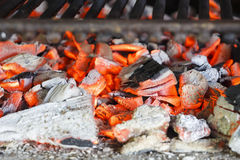 Hot coals of the grill Stock Image