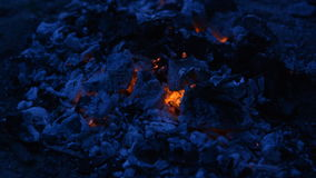 Hot coals at night, background stock video