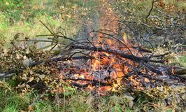 Hot coals in an outdoor fireplace. South Bohemia Royalty Free Stock Photos