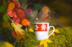 Hot Coco with christmas decorations Royalty Free Stock Photos