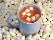 Hot cocoa. A cup of hot cocoa surrounded by marshmallows stock image