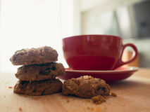 Hot cocoa and chocolate chips cookies. Stock Photos